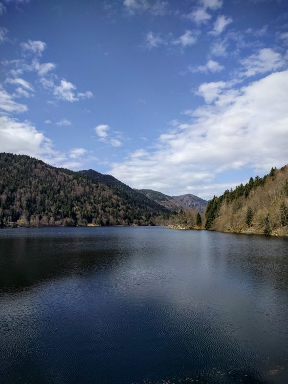lac de kruth nature alsace