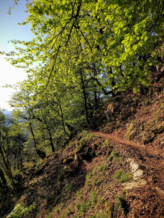 sentier des roches promenade